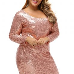 Champagne Sequin Plus Size Long Sleeve Dress